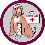 BADGE_1st-Aid_150