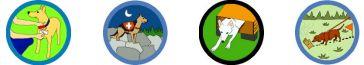 BANNER_Nose-Work_Badges