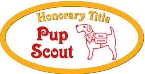 TITLE_Pup-Scout_150