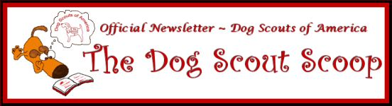 The_Scoop_Masthead1