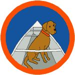BADGE_Canoeing_150