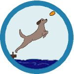 BADGE_Dock-Diving_150