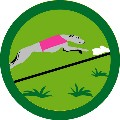 BADGE_lure_coursing